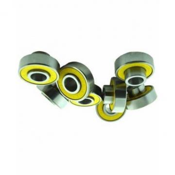 Radial Spherical Plain Bearing/Ge 20 Es G25 Es/China